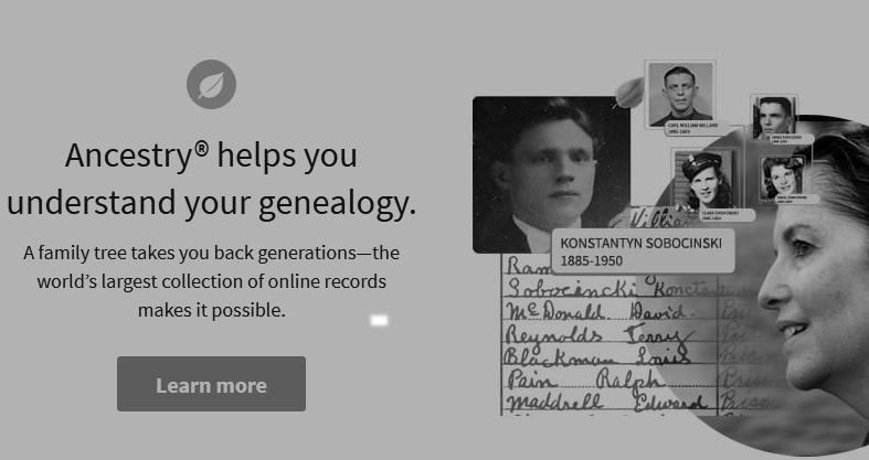 Ancestry features