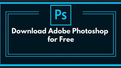 Adobe for free